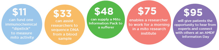 $11 can fund a disptick to measure mito activity, $33 can assist researchers to sequence DNA, $48 can provide a patient information pack, $75 enables researchers to work a morning in a research institute, $95 will give patients the opportunity to attend a Mito Information Day