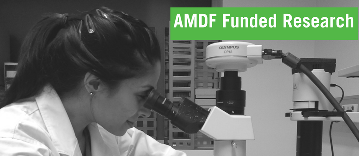 AMDF Funded Research